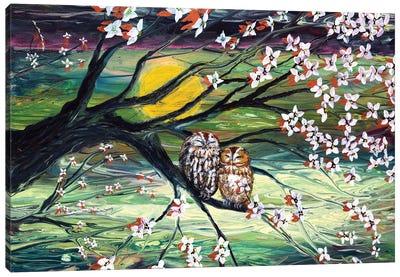 Sleepy Owls In Dogwood Blossoms Canvas Art Print
