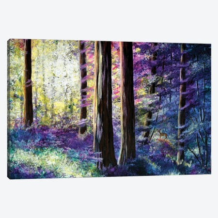 Sunlit Dawn In The Woods Canvas Print #LAI131} by Laura Iverson Canvas Wall Art