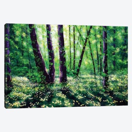 Fawn Lilies In Dappled Sun Canvas Print #LAI132} by Laura Iverson Canvas Wall Art