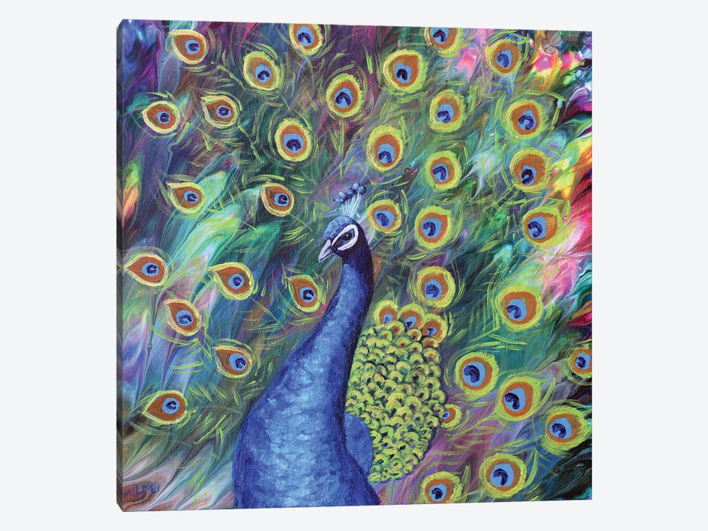 Peacock by Laura Iverson 1-piece Canvas Artwork