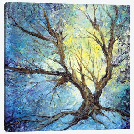 Bare Trees On A Winter Morning Canvas Print #LAI146} by Laura Iverson Canvas Artwork