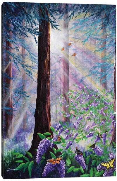 Butterfly Grove In Redwood Forest Canvas Art Print
