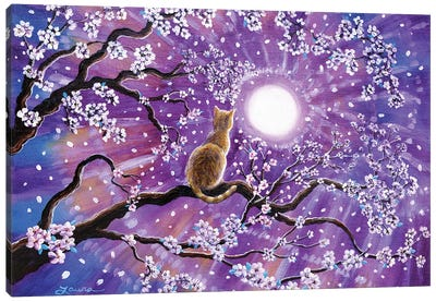 Champagne Tabby Cat In Cherry Blossoms Canvas Art Print
