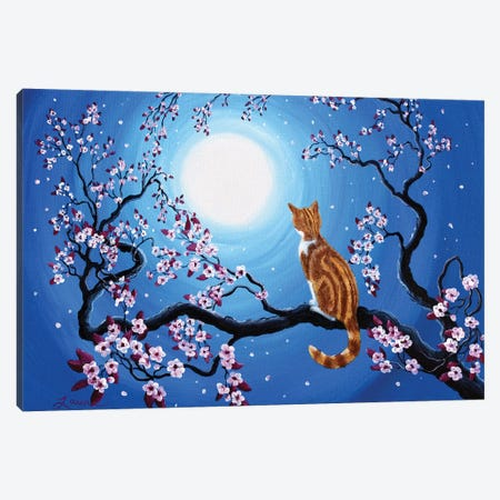 Creamsicle Kitten In Blue Moonlight Canvas Print #LAI27} by Laura Iverson Canvas Art Print