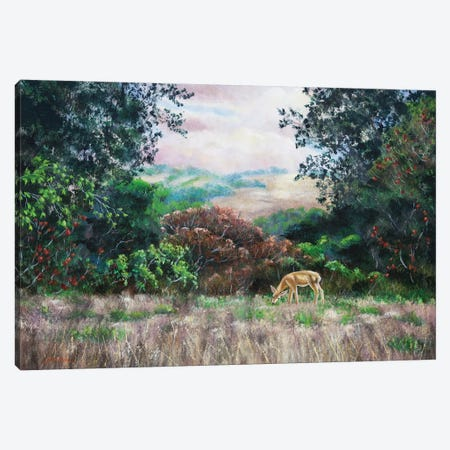 Deer On A Hilltop Vista 3-Piece Canvas #LAI33} by Laura Iverson Canvas Print