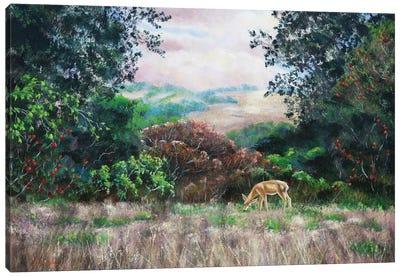 Deer On A Hilltop Vista Canvas Art Print