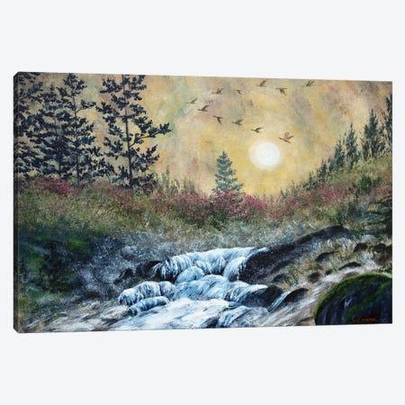 Enchanted Evening At Alsea Falls Canvas Print #LAI36} by Laura Iverson Canvas Artwork