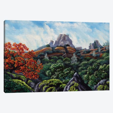First View Of Pinnacles Canvas Print #LAI37} by Laura Iverson Canvas Wall Art