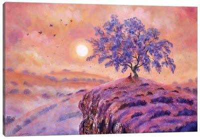 Meditating Under A Jacaranda Tree Canvas Art Print