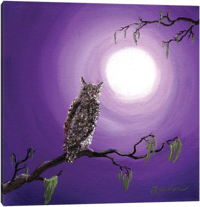 Owl On Mossy Branch Canvas Art Print