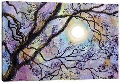 Screech Owl In White Oak Tree Canvas Art Print