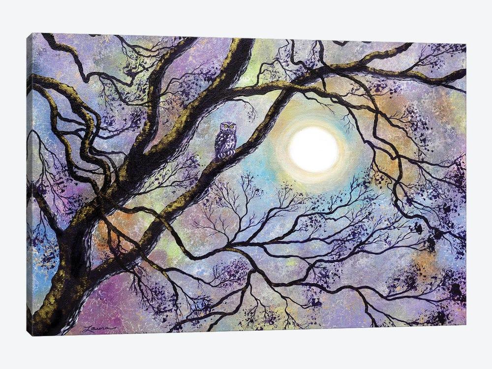 Screech Owl In White Oak Tree by Laura Iverson 1-piece Canvas Wall Art