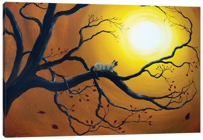 Siamese Cat In Golden Splendor Canvas Art Print