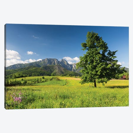 Poland, Tatra Mountains, Giewont Canvas Print #LAJ117} by Mikolaj Gospodarek Canvas Art Print