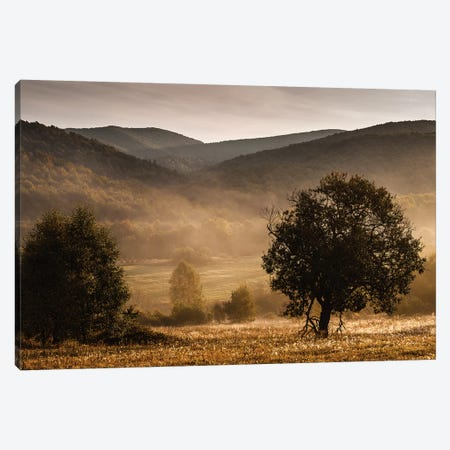 Bieszczady, Poland Canvas Print #LAJ121} by Mikolaj Gospodarek Canvas Print