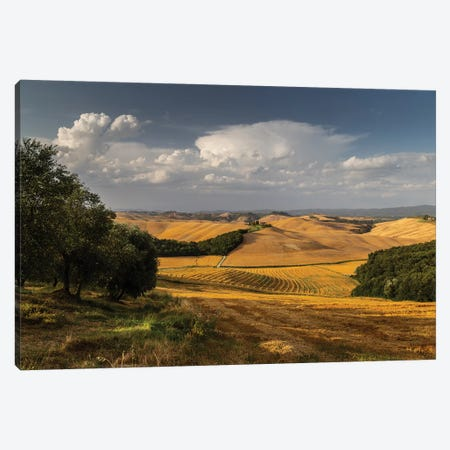 Italy, Tuscany, Province of Siena, Crete Senesi I Canvas Print #LAJ186} by Mikolaj Gospodarek Canvas Artwork