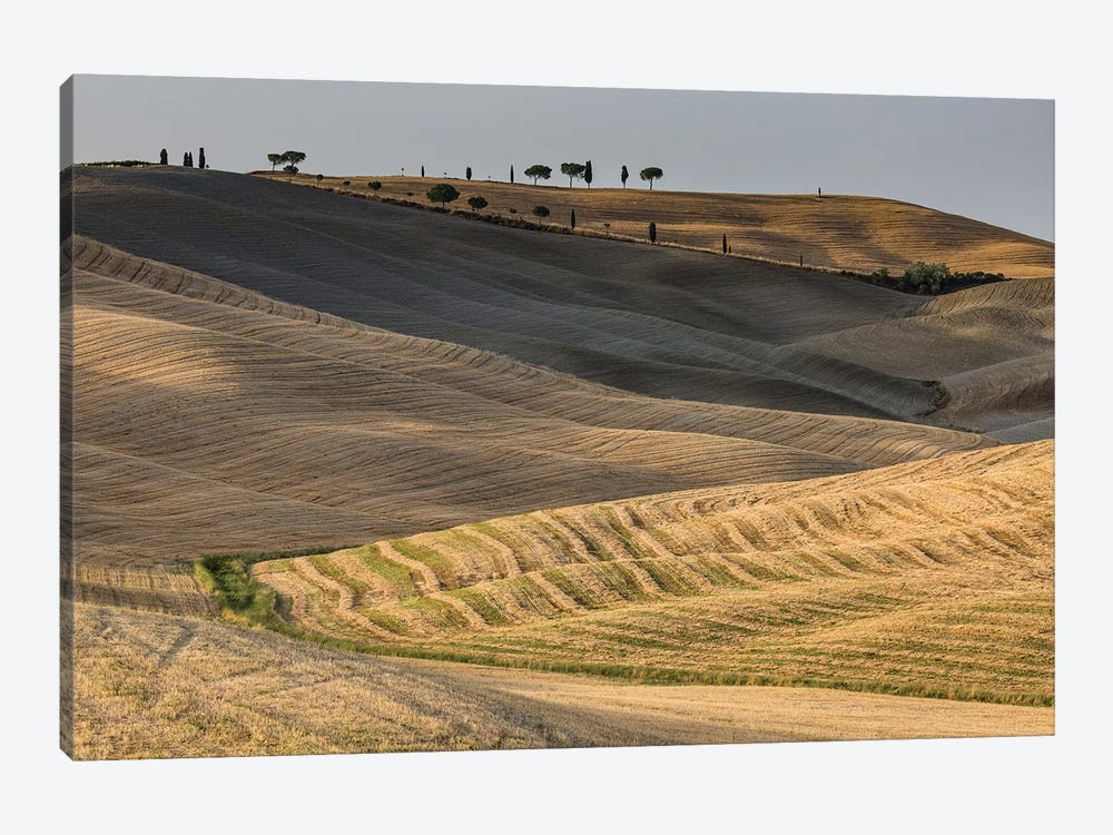 Italy, Tuscany, Province of Siena, Crete Senesi III by Mikolaj Gospodarek 1-piece Canvas Wall Art