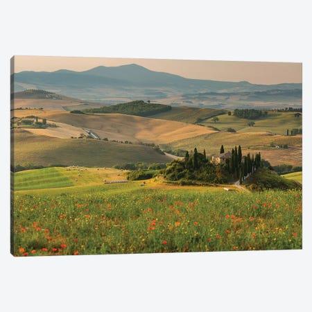 Italy, Tuscany, Province of Siena, Crete Senesi IV Canvas Print #LAJ189} by Mikolaj Gospodarek Art Print