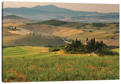Italy, Tuscany, Province of Siena, Crete Senesi IV Canvas Art Print