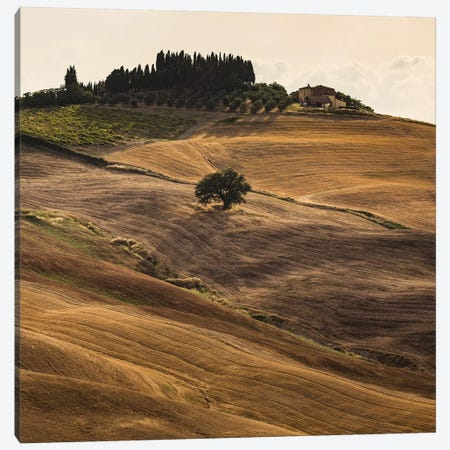 Italy, Tuscany, Province of Siena, Crete Senesi V Canvas Print #LAJ190} by Mikolaj Gospodarek Canvas Artwork