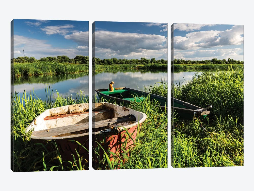 Poland, Voivodeship Masovian, Bug river IV by Mikolaj Gospodarek 3-piece Canvas Print