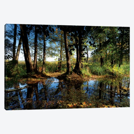 Europe, Poland, Lubusz Voivodeship, Drawa National Park  3-Piece Canvas #LAJ248} by Mikolaj Gospodarek Canvas Artwork