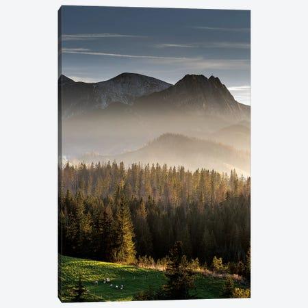 Europe, Poland, Lesser Poland, Tatra Mountains  I Canvas Print #LAJ262} by Mikolaj Gospodarek Canvas Wall Art