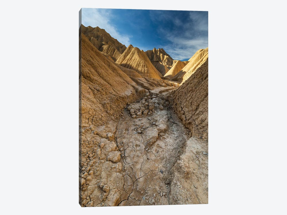 Europe, Spain, Bardenas Reales, Pisquerra X by Mikolaj Gospodarek 1-piece Canvas Art Print