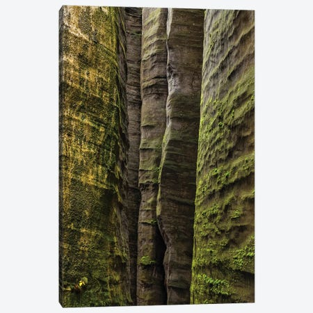 Czech Republic, Adršpach-Teplice Rocks I Canvas Print #LAJ2} by Mikolaj Gospodarek Canvas Artwork