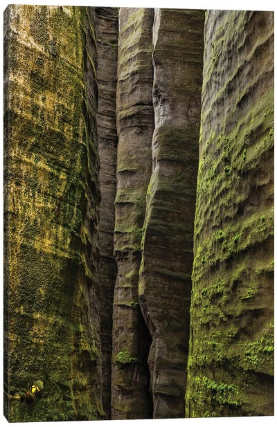 Czech Republic, Adršpach-Teplice Rocks I Canvas Art Print