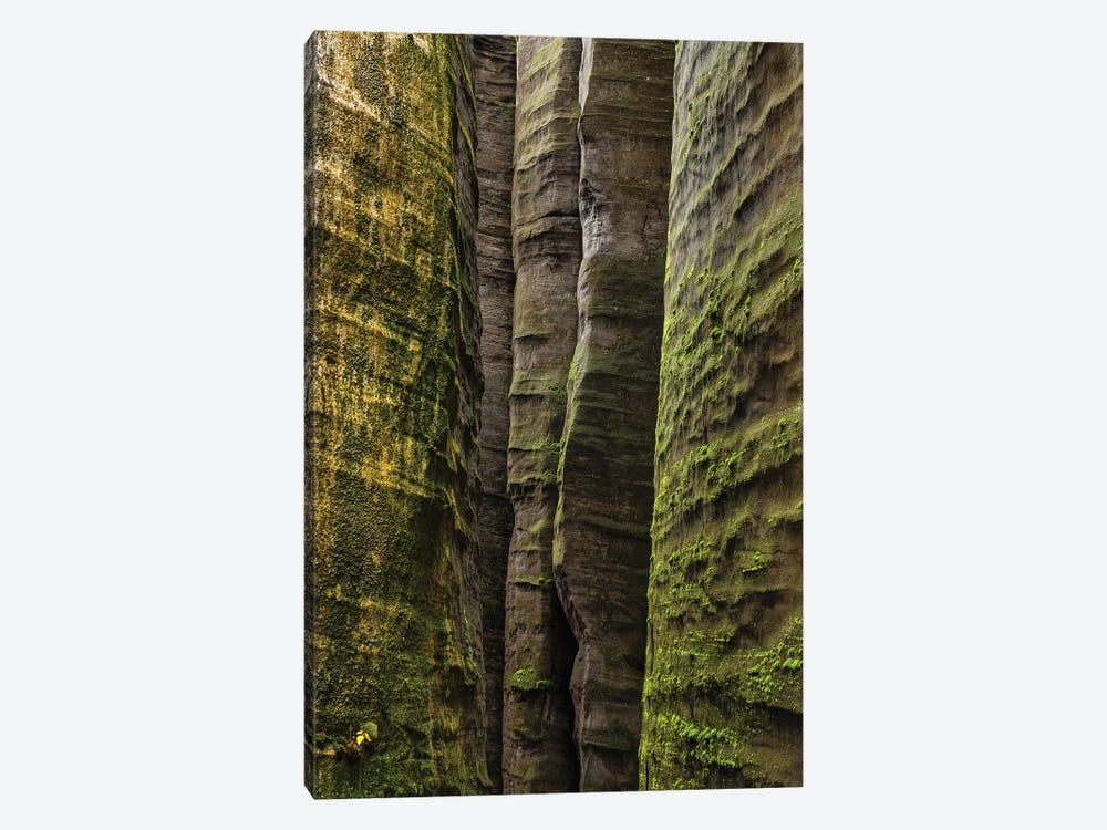Czech Republic, Adršpach-Teplice Rocks I by Mikolaj Gospodarek 1-piece Art Print
