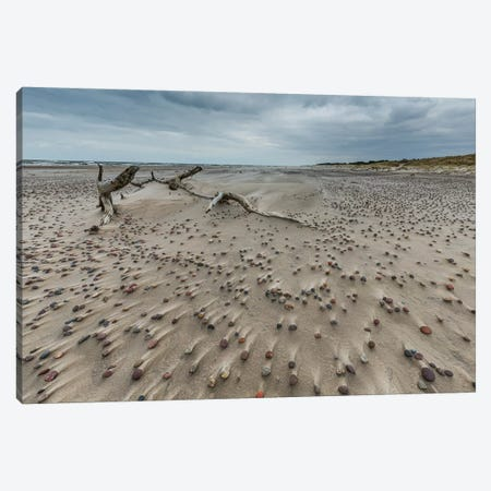 Poland, Baltic Sea, Slowinski National Park I Canvas Print #LAJ376} by Mikolaj Gospodarek Canvas Print