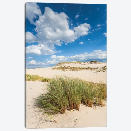 Poland, Baltic Sea, Slowinski National Park IV Canvas Print #LAJ379} by Mikolaj Gospodarek Canvas Artwork