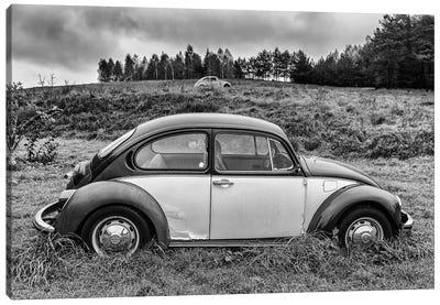 Volkswagen Beetle Canvas Art Print