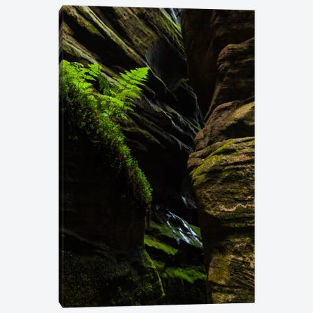 Czech Republic, Adršpach-Teplice Rocks II Canvas Print #LAJ3} by Mikolaj Gospodarek Canvas Art