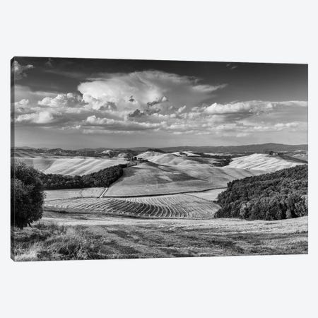 Italy, Tuscany I Canvas Print #LAJ425} by Mikolaj Gospodarek Canvas Art Print