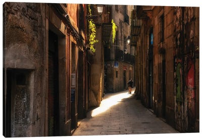 Street In Barcelona, Spain Canvas Art Print