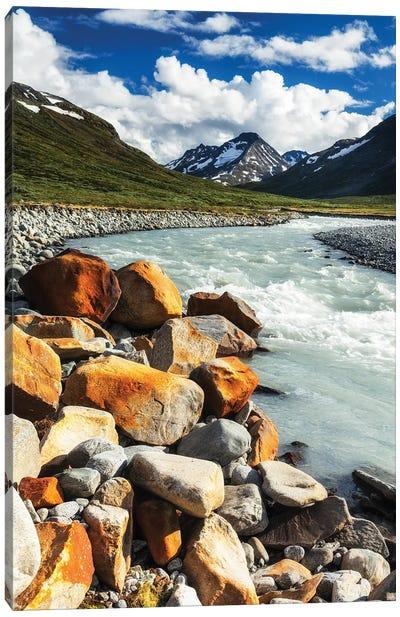 Mountain Stream, Jotunheimen, Norway Canvas Art Print