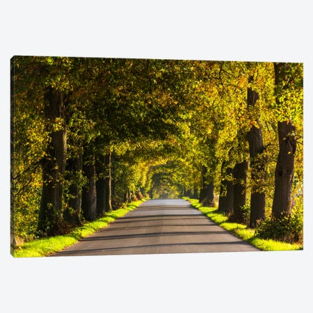 Poland, Jura, Road Canvas Print #LAJ63} by Mikolaj Gospodarek Art Print