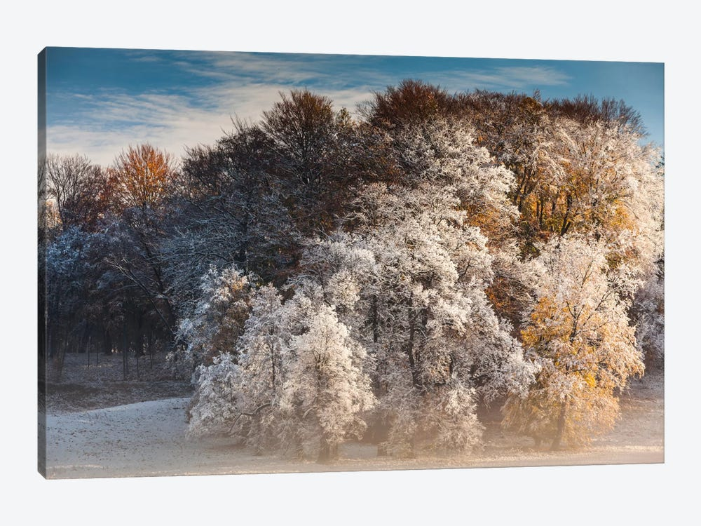 Poland, Muskau Park by Mikolaj Gospodarek 1-piece Canvas Artwork