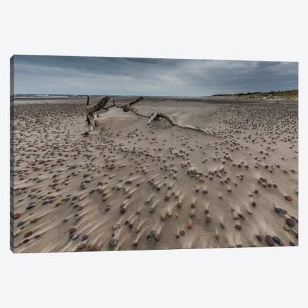 Poland, Baltic Sea, Stones On The Beach Canvas Print #LAJ80} by Mikolaj Gospodarek Art Print
