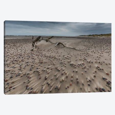 Poland, Baltic Sea, Stones On The Beach Canvas Print #LAJ80} by Mikolaj Gospodarek Art Print