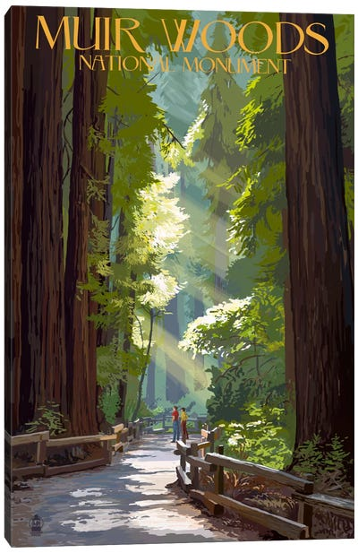 Muir Woods National Monument (Old-Growth Redwoods) by Lantern Press Canvas Art Print