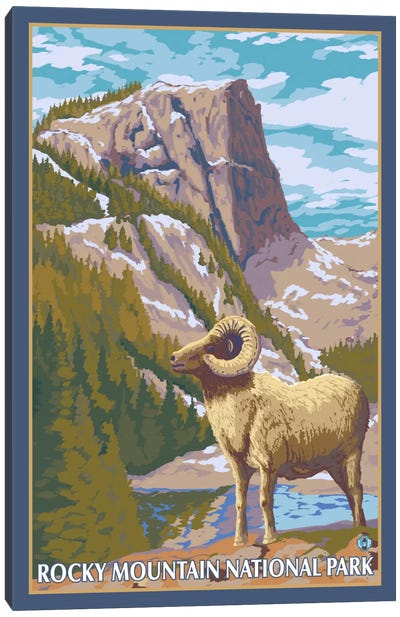 Rocky Mountain National Park (Big Horn Sheep) Canvas Art Print
