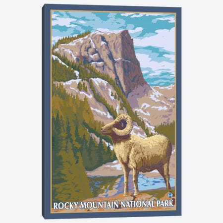 Rocky Mountain National Park (Big Horn Sheep) Canvas Print #LAN109} by Lantern Press Canvas Art