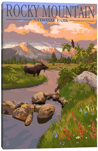 Rocky Mountain National Park (Moose Along A Mountain Stream) by Lantern Press Canvas Art Print