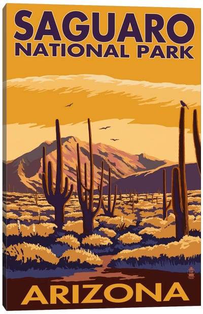 Saguaro National Park (Desert Landscape) by Lantern Press Canvas Art Print