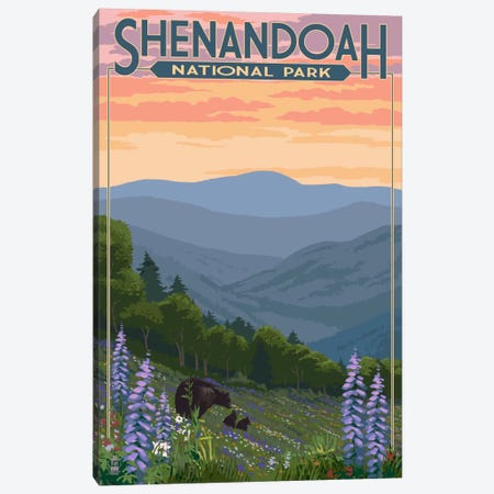 Shenandoah National Park (Black Bear Family) Canvas Print #LAN115} by Lantern Press Canvas Art