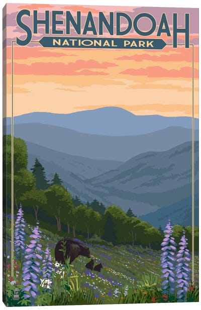 Shenandoah National Park (Black Bear Family) by Lantern Press Canvas Art Print