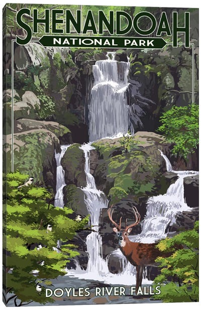 Shenandoah National Park (Doyles River Falls) Canvas Art Print